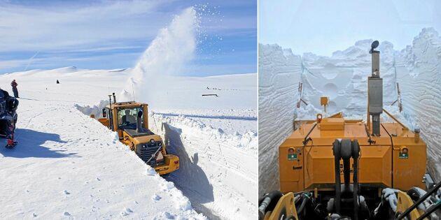 Nu plogas Vildmarksägen upp igen – i rekorddjup snö!