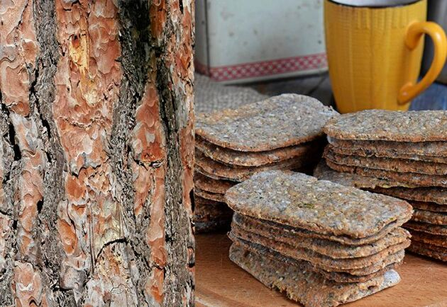 Barkbröd gör du av mjöl gjort av tallbark.