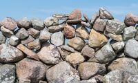 Rev i stenmurar – anmäld för miljöbrott