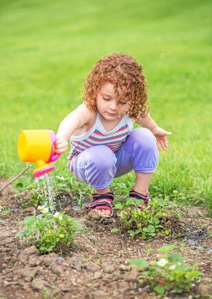 Ge vatten till bin via blommorna.