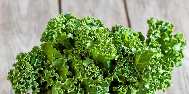 Ny studie: Grönkål dämpar farliga inflammationer
