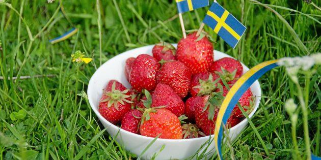 Så kollar du att jordgubbarna du köper verkligen är svenska