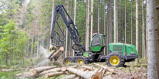 Kvarlämnat barkborreträd kan ge vite