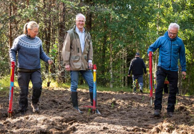 För att markera starten för stiftelsen planterade grundarna en blandskog av gran, tall, lärk och björk på övergiven åkermark i Granö. Från vänster: Maria Hedblom, Jan Wejdmark och Gunnar Olofsson.