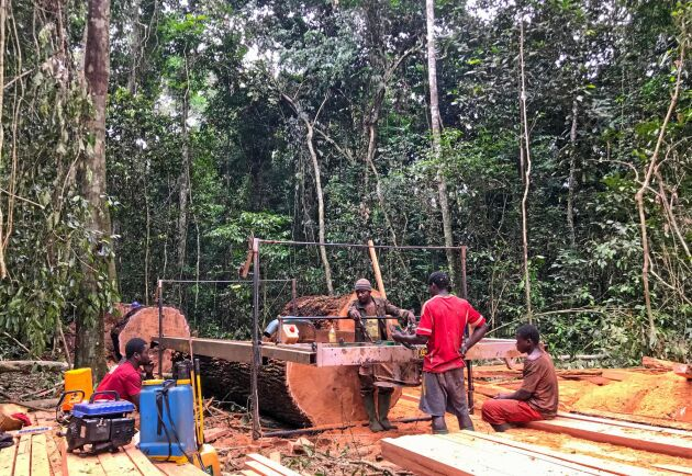 Efter regn blir vägarna svårkörda i södra Kamerun. Med ett mobilt sågverk blir en tjock stock förvandlad till reglar inne i regnskogen.