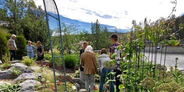 Öppen trädgård 2018: Boka in den 15 juli redan nu!