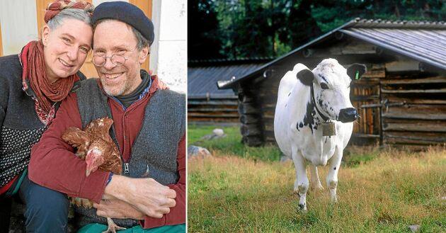 Paret Mandelmann tvingades nödslakta gårdens får men lyckades rädda sina kor.