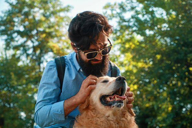 Män med skägg bär på höga halter av bakterier och i vissa fall hälsofarliga mikroorganismer, menar forskare.
