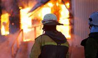 Kalvar skadade i ladugårdsbrand