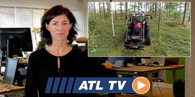 ATL TV: Vi testar storsäljaren i skogen