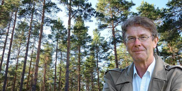 Gödsling av skogen kan vara bra för klimatet