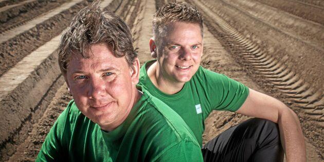Brödernas odling ska ge eko i landet