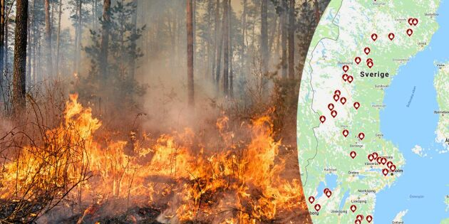 Skogsbränder rasar i hela Sverige – så följer du eldningsförbudet