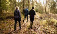 Det behövs vanliga människor som kan berätta om sin skog
