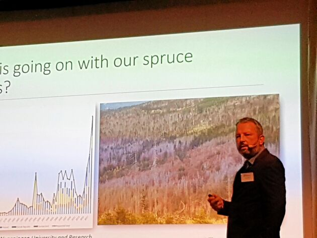 Tomáš Hlásny, forskare vid fakulteten för skogs- och trävetenskap vid universitetet i Prag, handlar all avverkning nu i princip om döda träd, men massor står kvar eller blir liggande.