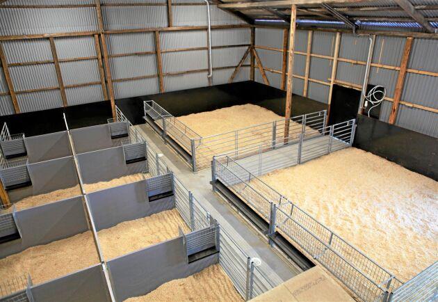40 baggar får plats i seminsstationens nybyggda stall.