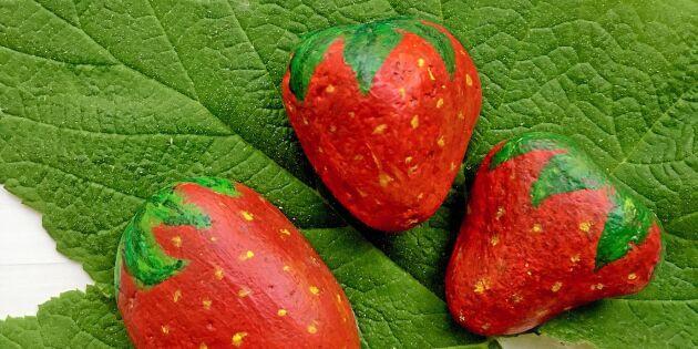 Lura fåglarna med jordgubbar av sten