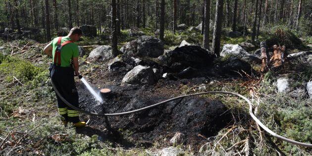 Eftersläckningen måste samordnas efter skogsbränderna