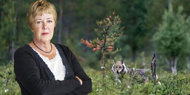 """""""Miljörörelsen måste se helheten i rovdjursfrågan"""""""