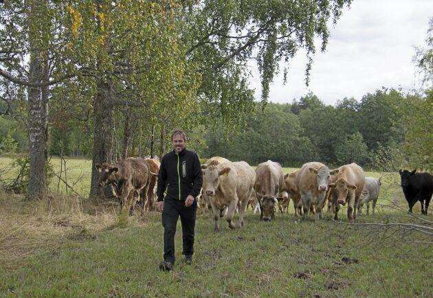 Henrik Nisser blev årets nötköttsföretagare i Värmland 2019.