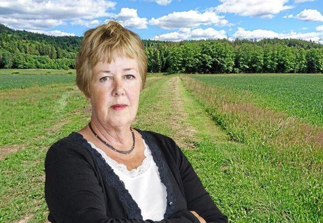 Kerstin Davidson, ledarskribent.