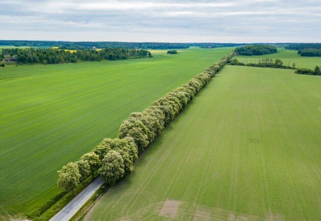 Gimmersta säteri har ägts av makarna Kerstin och Robert Liljekvist som köpte godset 2010 av Torgils Bonde.