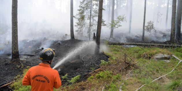 Polisen lägger ner utredningen om sommarens bränder