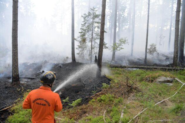 En av de större bränderna runt Sala i somras.