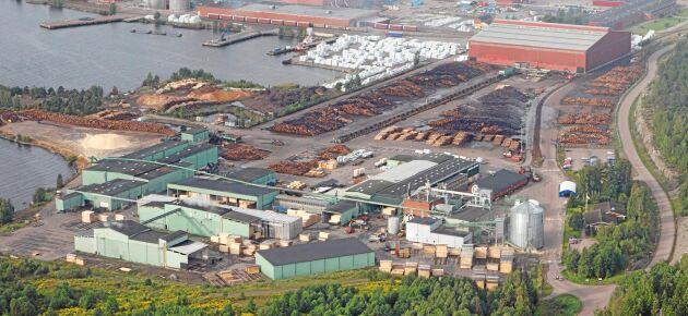 Sågverket i Grums har 110 anställda men behöver rekrytera 60 till som en effekt av investeringen i linjen för KL-trä.
