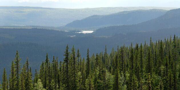 Skogsägare uppvaktar Näringsdepartementet