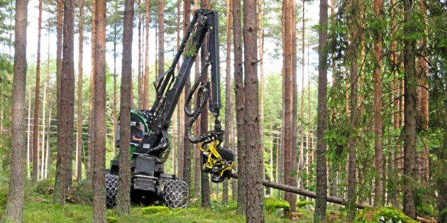 Ny VUX-utbildning för skogsmaskinsförare
