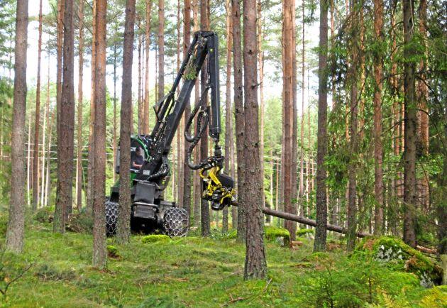 Nya skogsmaskinförare ska utbildas inom vuxenutbildning.