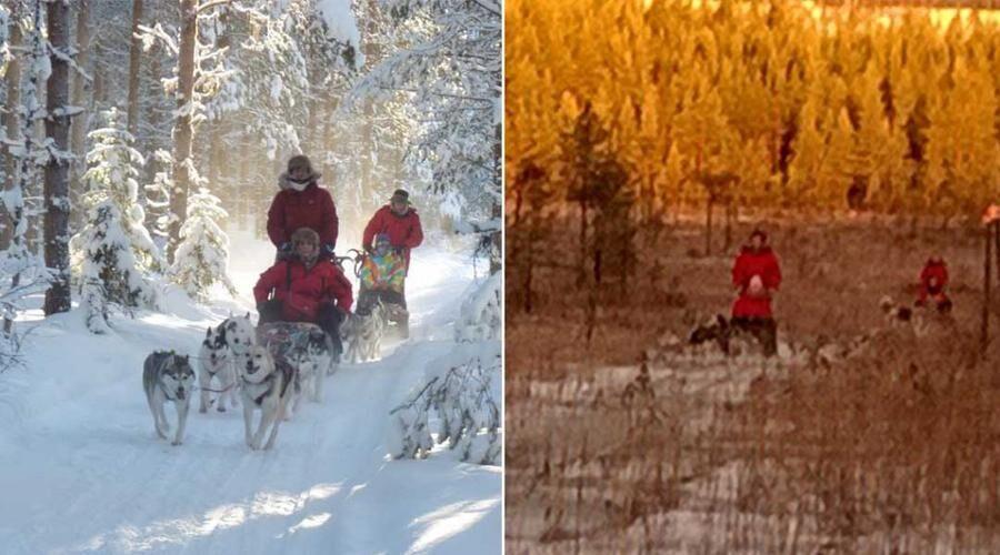 Snöbristen har blivit ett allvarligt hot mot svensk vinterturism.