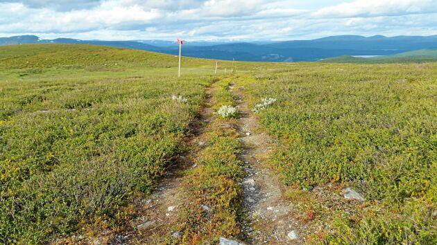 En och en halv mil åt norr går stigen till Gränssjö och bilvägen. Längst bort syns Vindelfjällen.