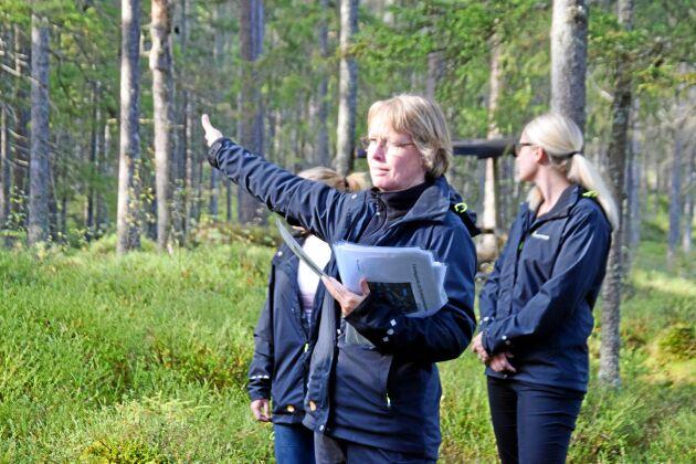 Lena Sandell, skogskonsulent på Skogsstyrelsen, beskriver varför Tjädern trivs i skogen i Hampedal.