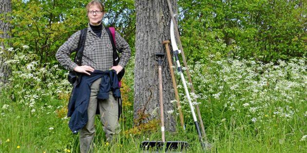 Gotlands almar är räddade – tack vare Karins stora engagemang