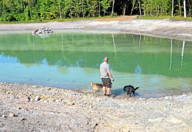 Vattnet i dammarna är rent och duger även för bad. Åtminstone till Gustav Edvardssons hundar.