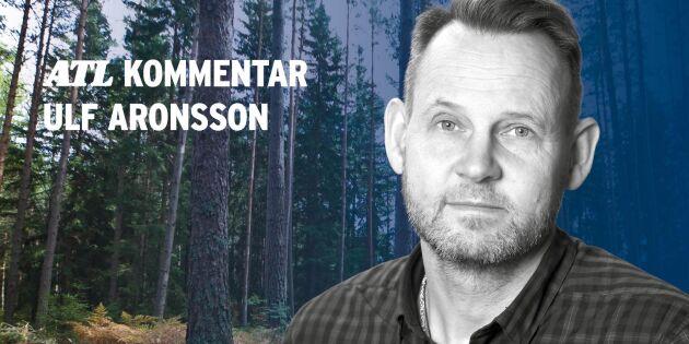 """""""Ekonomisk vinst att låta skogen stå?"""""""