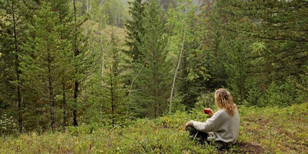 3 enkla må bra-övningar att göra ute i naturen