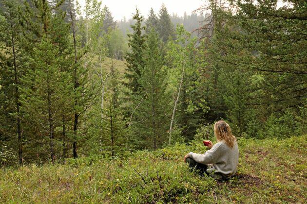 Hitta din egen favoritplats i naturen.