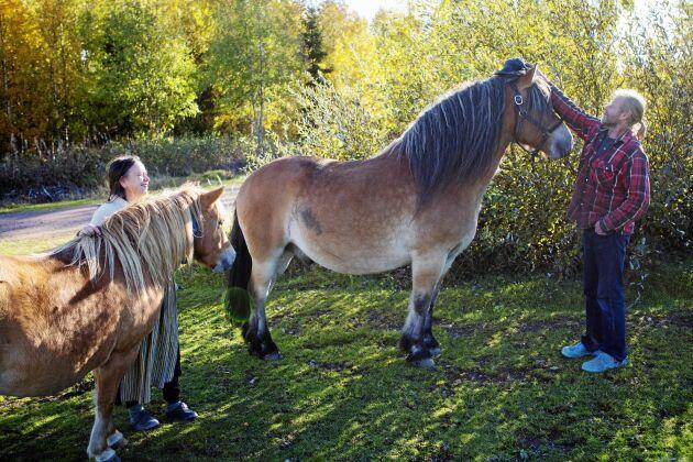 Hästarna hjälper till att hålla fäbodlandskapet öppet.