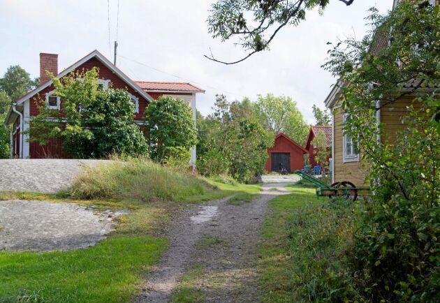 Norrgården som ägs av en stiftelse kan delvis få brukas av den nya bonden på ön.