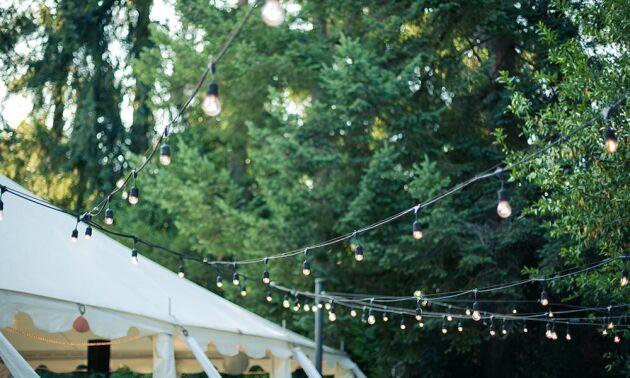 Dekorera trädgården med lampor för att skapa feststämning.