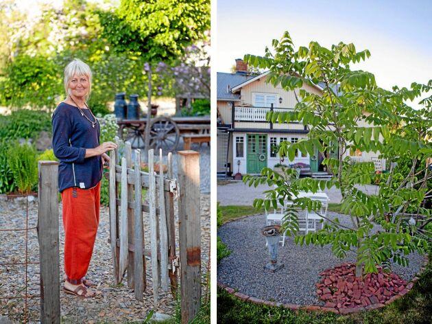Konsthantverkaren och trädgårdsinspiratören Susanne Arnfridsson är med i Öppen Trädgård för första gången 2018.