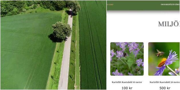 Till salu: Blommande fältkanter