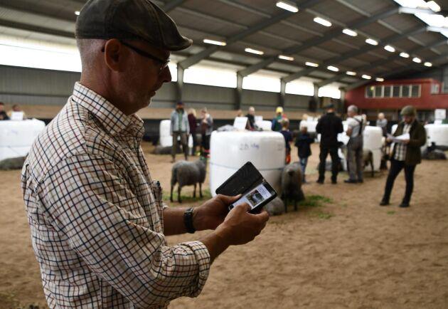 Årets baggauktion på Gotland genomfördes på ett annorlunda sätt i år. Det var digital budgivning på Boskapstorget men djuren gick att beskåda under auktionsdagen.