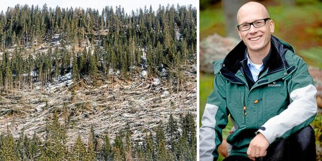 Sveaskog hjälper Italien efter höstens dramatiska stormar