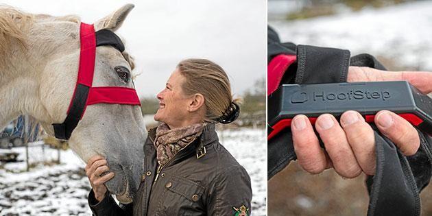 Svensk hästuppfinning ska ut i världen