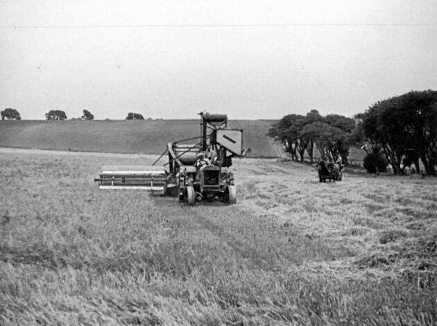 Nordens första skördetröska i arbete på Axelvold 1928