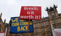 Ödesdag för brexit – det här betyder termerna